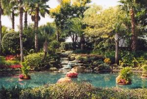 orlando_vegetazione