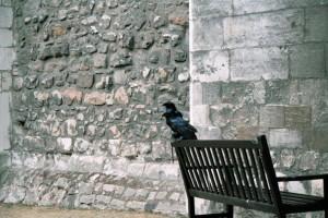 crn2003_210_london_tower_cornacchie