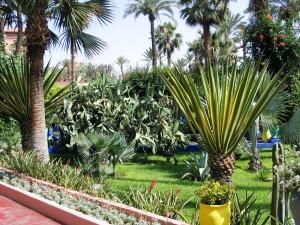 Mar2005_136_marrakech_giardini_della_menara