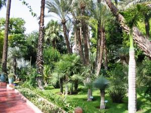 Mar2005_137_marrakech_giardini_della_menara