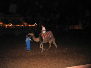 Mar2005_160_marrakech_chez_ali