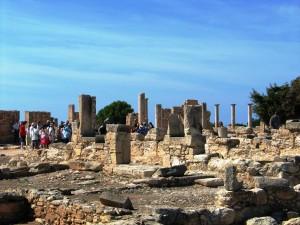 IMG_4996_Cipro_(Tempio_di_Apollo)
