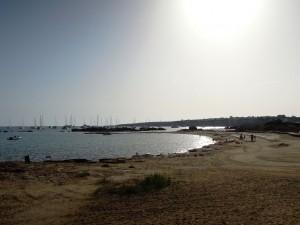 img_236_Formentera