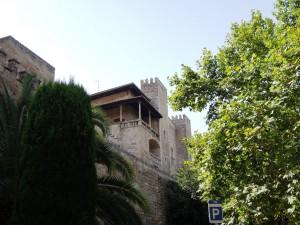img_266_Palma_De_Mallorca