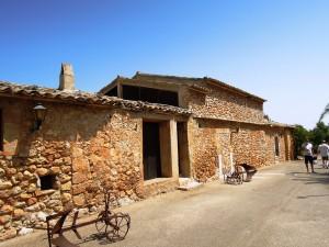 img_282_Palma_De_Mallorca