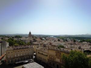 img_377_Avignone