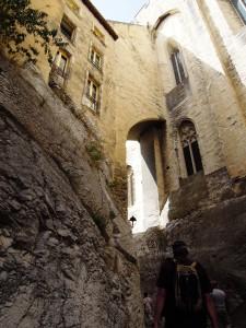 img_382_Avignone_(Palazzo_dei_Papi)