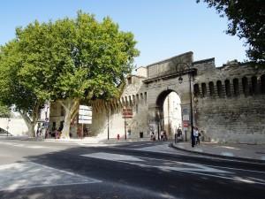 img_384_Avignone