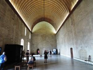 DSCN0781_Avignone