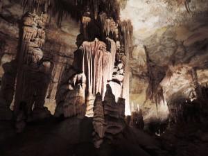 DSCN0807_Palma_(Grotta_del_Drago)