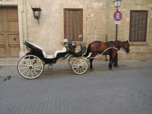 DSCN0087 Palma de Mallorca