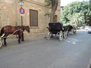 DSCN0088 Palma de Mallorca