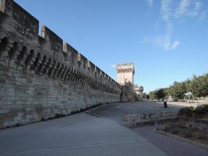 DSCN0231 Avignone
